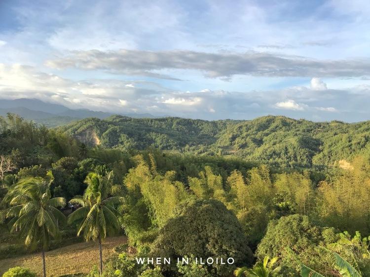 Mizpah Garden view